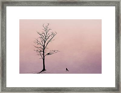 The Serenade Framed Print by Tom Mc Nemar