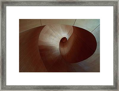 The Serpent Framed Print
