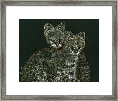 The Serval Twins Framed Print by Jessica Kale