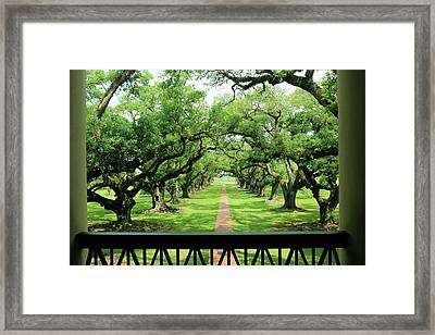The Shade Of The Oak Tree Framed Print