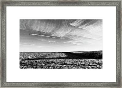 The Shadow Framed Print by Wim Lanclus