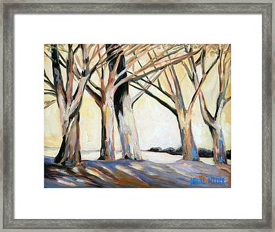 The Shadows Framed Print