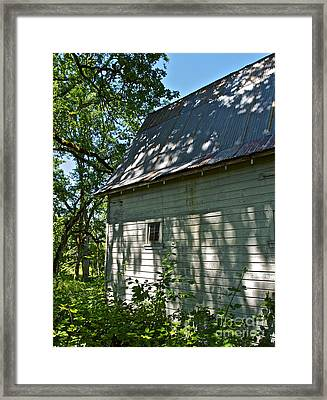 The Shadows Framed Print by Gwyn Newcombe
