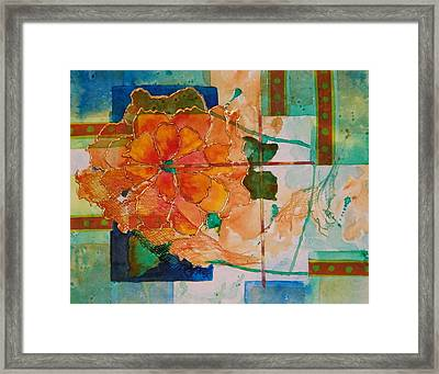 The Shape Of Color Framed Print by Terry Honstead