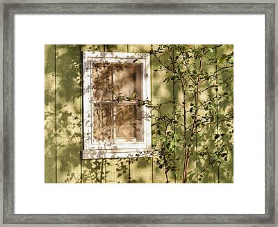 The Shed Window Framed Print