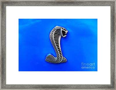 The Shelby Snake Framed Print