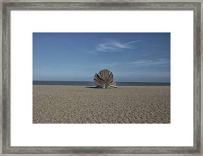 The Shell Framed Print