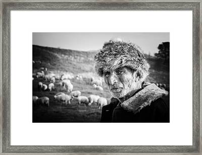 The Shepherd Framed Print by Cornel Mosneag