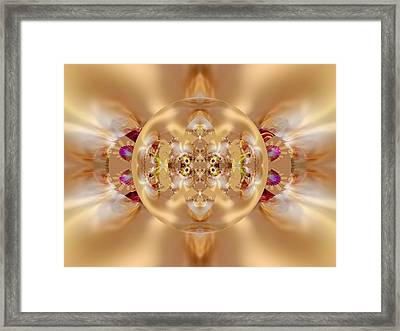 The Shine Of Satin Framed Print