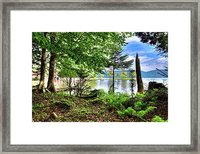 Framed Print featuring the photograph The Shore At Covewood by David Patterson