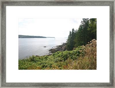 The Shore Framed Print by Dennis Curry