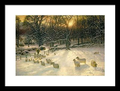 Winter Sunset Framed Prints