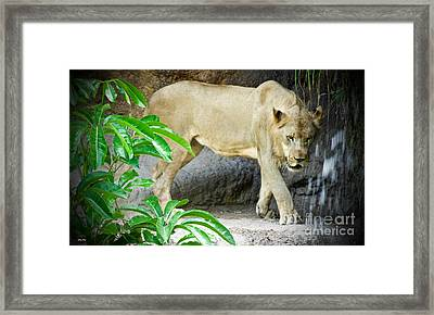 The Shower Framed Print by Judy Kay