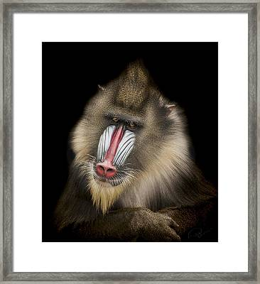 The Shrink Framed Print by Paul Neville