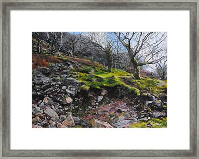 The Side Of The Valley Framed Print