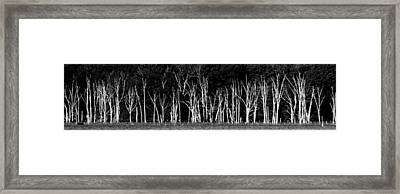 Framed Print featuring the photograph The Silence Of Witnesses by Steven Huszar