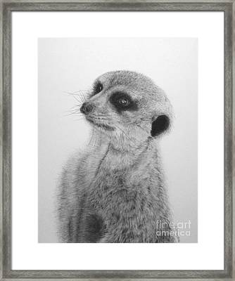 The Silent Sentry Framed Print