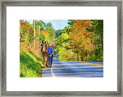 The Simple Life 2 Framed Print