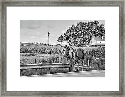 The Simple Life 3 Bw Framed Print