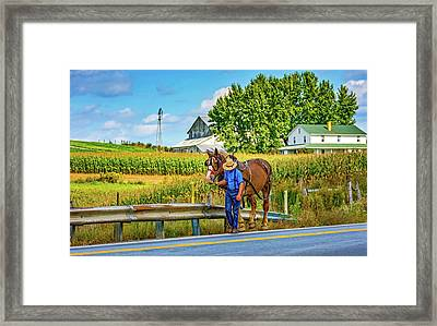 The Simple Life 3 Framed Print