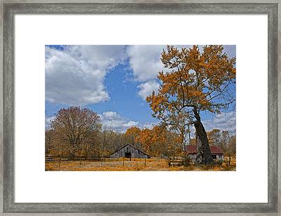 The Simple Life Framed Print by Bonnie Barry