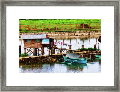 The Simple Life In Living Color Framed Print by James BO  Insogna
