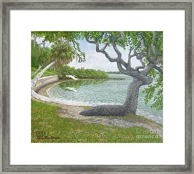 The Sitting Oak Tree Framed Print by Jim Soldo