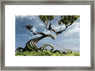 The Sitting Tree Framed Print