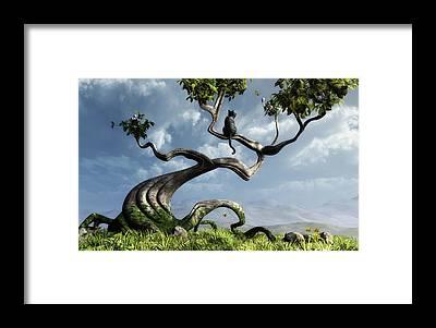 Peaceful Framed Prints