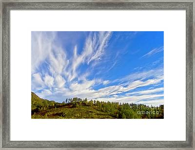 The Skies Framed Print by Heiko Koehrer-Wagner