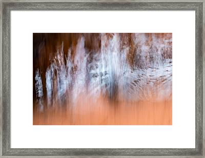 Framed Print featuring the photograph The Skin And Bones Of Water by Deborah Hughes