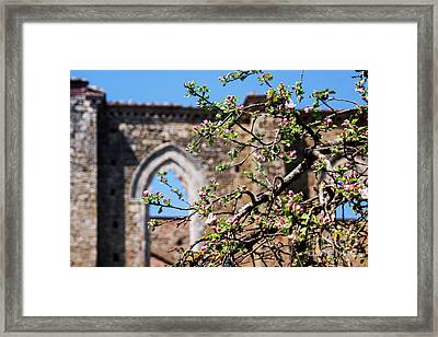 The Sky As A Roof Framed Print