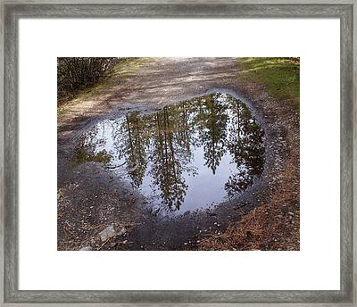The Sky Below Framed Print