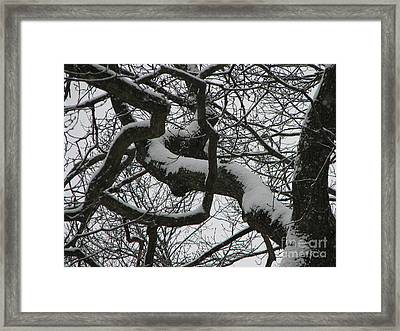 The Skyward Pathway In Snow Framed Print by Roxy Riou