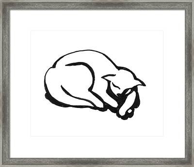 Framed Print featuring the drawing The Sleeping Cat by Keith A Link