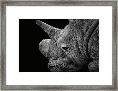 The Sleepy Rhino Framed Print