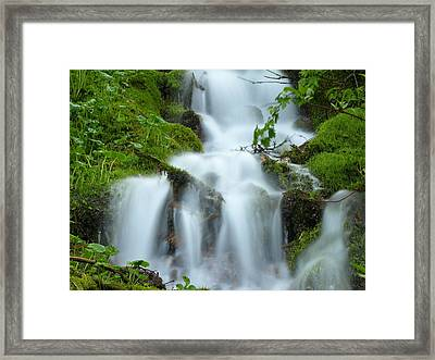 Framed Print featuring the photograph The Slithering Mist by DeeLon Merritt