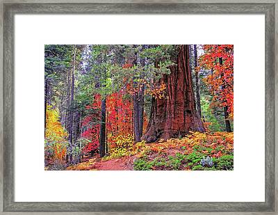 The Small And The Mighty Framed Print by Lynn Bauer