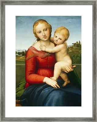 The Small Cowper Madonna Framed Print by Raphael
