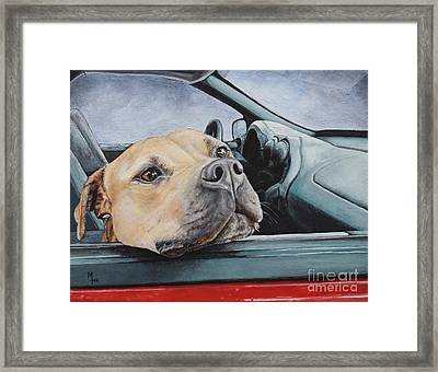 The Smell Of Freedom Framed Print by Mary-Lee Sanders