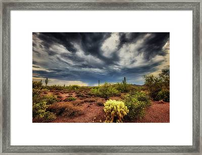 The Smell Of Rain Framed Print