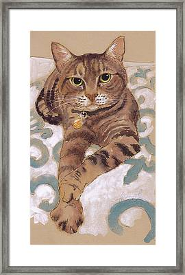 The Smooth-talkin' Cat Framed Print by Tracie Thompson