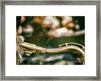 The Snake  Framed Print by Steven Digman