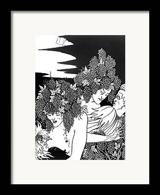 Grape Vines Drawings Framed Prints