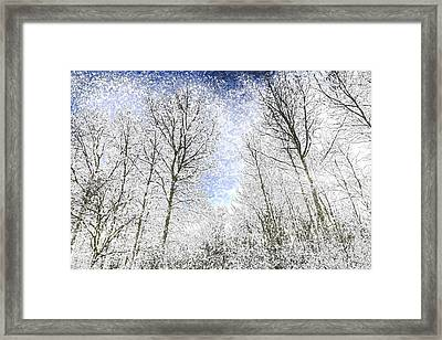 The Snow Forest Art Framed Print