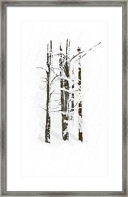 The Snow Just Won't Stop Framed Print
