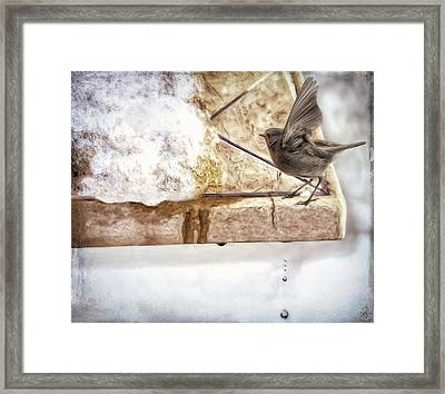 Framed Print featuring the photograph The Snow Melts by Pennie  McCracken