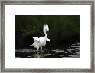 The Snowy Chicken Da Framed Print by Ernie Echols
