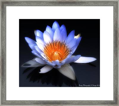 The Soft Soul Framed Print