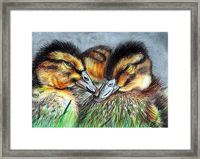 The Softest Touch Framed Print by Sarah Stanaland